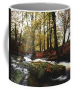 Sally Gap, County Wicklow, Ireland Coffee Mug