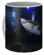 Sand Tiger Shark, Blue Zoo Aquarium Coffee Mug