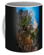 Sea Fan On Soft Coral In Raja Ampat Coffee Mug