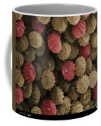 Sem Of Ergot Coffee Mug by Ted Kinsman