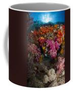 Soft Coral In Raja Ampat, Indonesia Coffee Mug