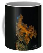 Soft Coral Seascape, Fiji Coffee Mug
