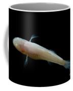 Southern Cave Fish Coffee Mug