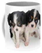 Spaniel Puppies Coffee Mug