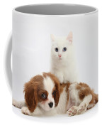 Spaniel Puppy And Kitten Coffee Mug