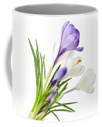 Spring Crocus Flowers Coffee Mug