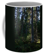 Spruces Coffee Mug