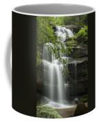 Standing Rock Falls Coffee Mug