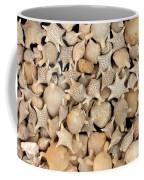 Star Sand Foraminiferans Coffee Mug