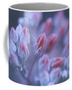 Stonecrop Flowers Emerge On An Early Coffee Mug