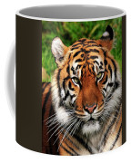 Sumatran Tiger Portrait Coffee Mug