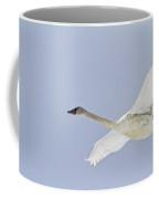 Swan In Flight, Yukon Coffee Mug