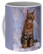 Tabby Cat Portrait Of A Cat Coffee Mug