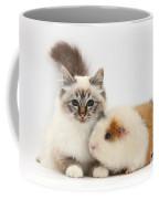 Tabby-point Birman Cat And Guinea Pig Coffee Mug