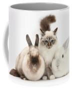 Tabby-point Birman Cat And Rabbits Coffee Mug