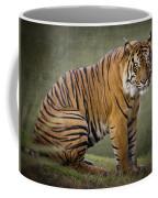 The Sumatran Tiger  Coffee Mug