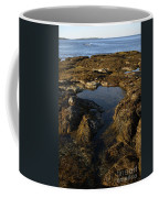 Tidepool In Maine Coffee Mug