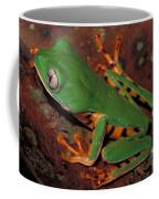 Tiger-striped Monkey Frog Coffee Mug