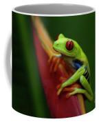 Tree Frog 19 Coffee Mug