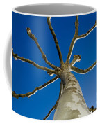 Tree With Branches Coffee Mug