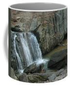 Turtle In The Rocks Coffee Mug