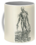 Vesalius De Humani Corporis Fabrica Coffee Mug by Science Source