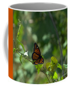 Viceroy Butterfly Coffee Mug