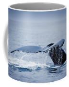 Whales Fluke Coffee Mug