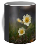 White Dryas Coffee Mug