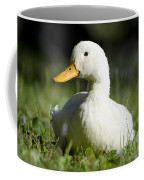 White Duck Coffee Mug