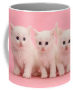 White Kittens Coffee Mug