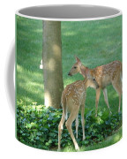Whitetail Fawns Coffee Mug