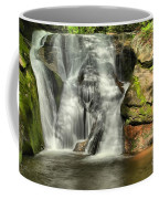 Widows Creek Falls Coffee Mug