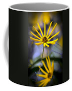 Wild Swamp Daisy Coffee Mug