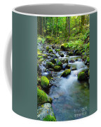Winding Through The Rocks  Coffee Mug