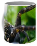 Wolf Spider And Babies 2 Coffee Mug