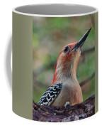 Woodpecker II Coffee Mug