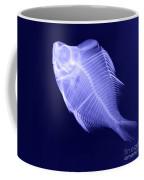 X-ray Of A Humphead Glassfish Coffee Mug