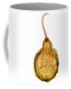X-ray Of Fall Decorative Gourd Coffee Mug