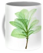 X-ray Of Tobacco Coffee Mug