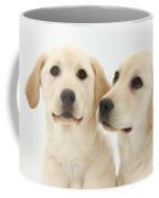 Yellow Labrador Retriever Pups Coffee Mug