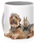 Yorkshire Terrier Dog And Baby Rabbit Coffee Mug