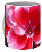 Zonal Geranium Named Candy Fantasy Kiss Coffee Mug