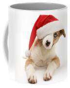 Border Collie Puppy Coffee Mug by Jane Burton