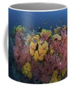 Reef Scene With Coral And Fish Coffee Mug