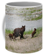Black Bear Family Coffee Mug