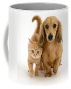 Kitten And Puppy Coffee Mug by Jane Burton