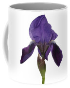 Blue Iris Blooming Coffee Mug