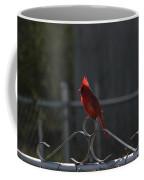 1417 Fenced In Coffee Mug