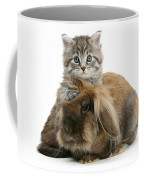 Kitten And Rabbit Coffee Mug